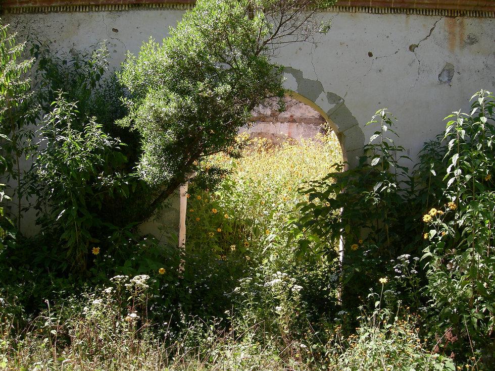 El Roble_Oaxaca Nov 025.jpg