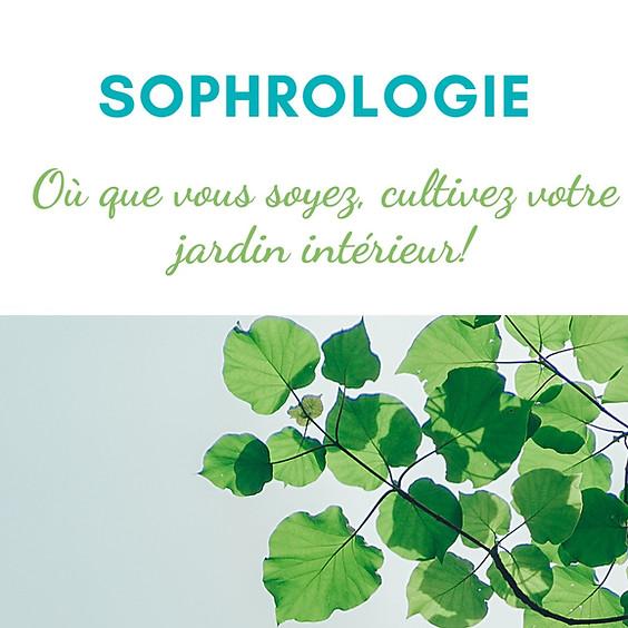 Sophrologie de Groupe Visioconférence