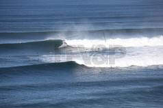 Surfing Bells FFV&P