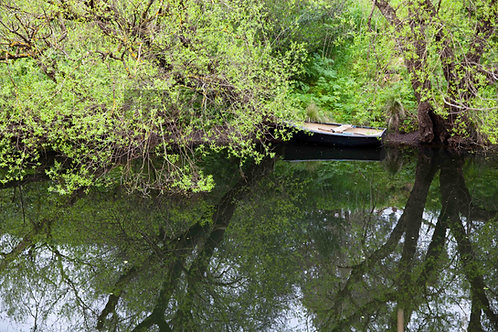 Boat in Merri River