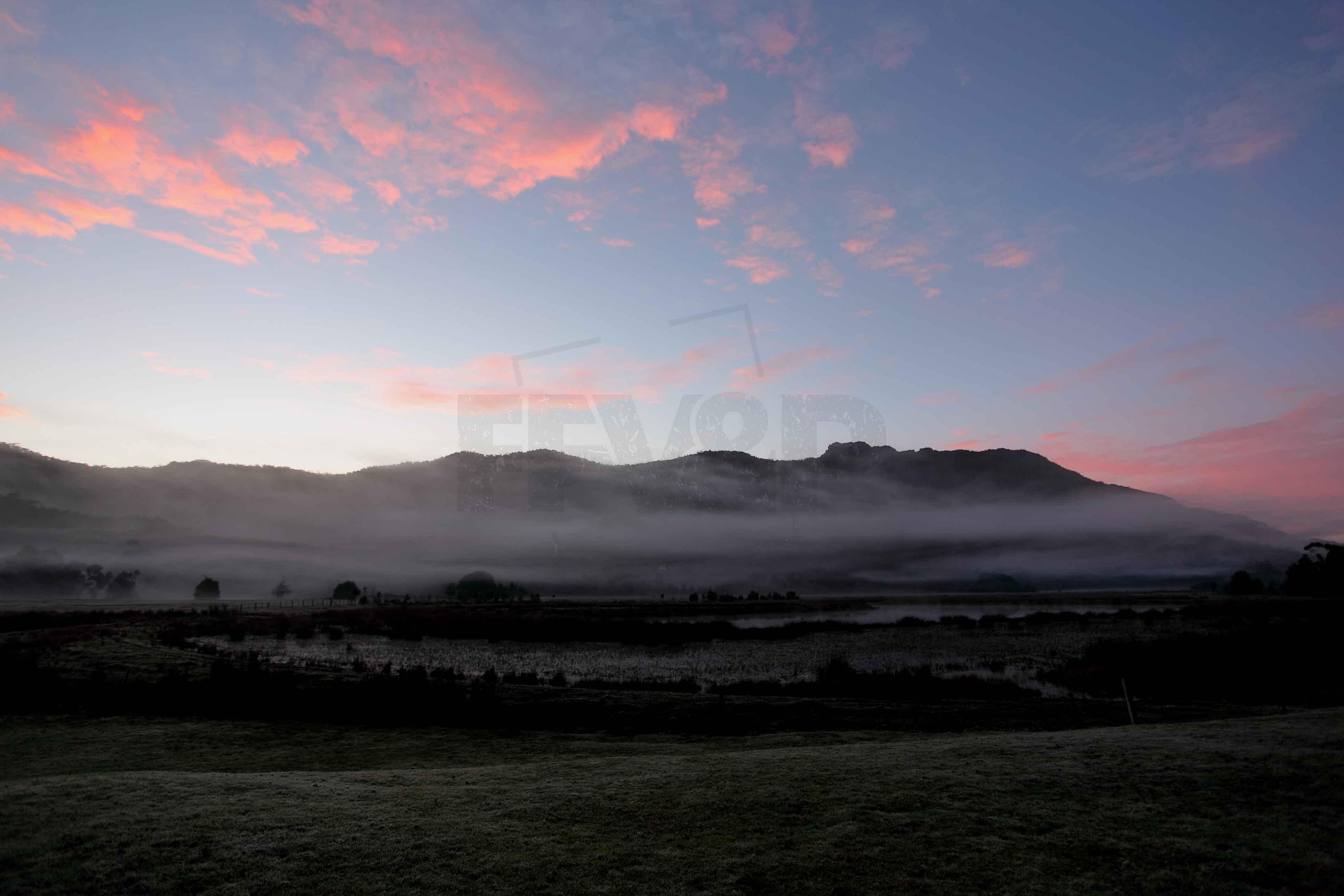 Morning mists 9800