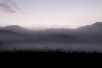 Morning Mists Grampians