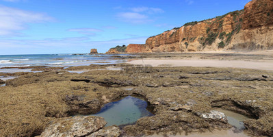 Rockpools to Lighthouse