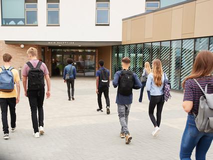 Campus and Schools
