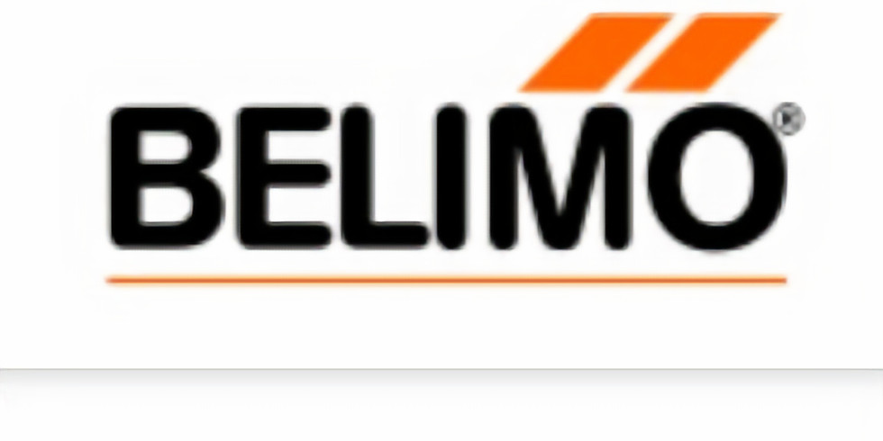 Introduction to Belimo