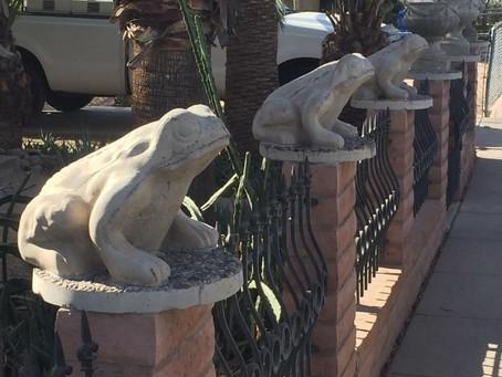 Phoenix Neighborhood Walks, Part III