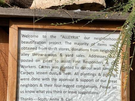 Phoenix Neighborhood Walks, Part IV