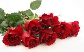 86266_flowerwebredrosevalentines.jpg