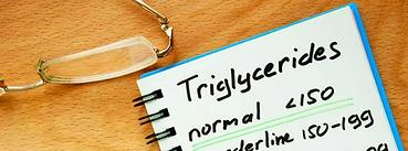 triglycerides_828x315.webp