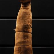 La momie d'un chat égyptien
