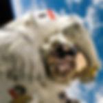 spacewk7a.jpg