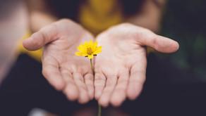 Valores en una relación de pareja sana