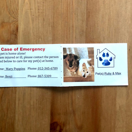 Pet Emergency Notification Card Free Printable Download