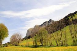 Thollon - Les Mémises au printemps
