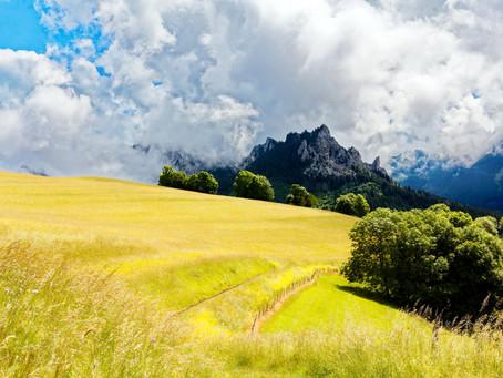 Le Mont Bénand, la balade sympa de Bernex