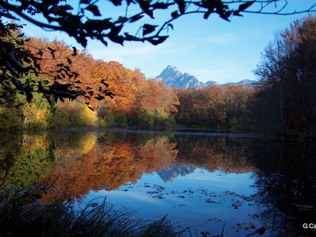Automne à La Beunaz (Lac Noir)