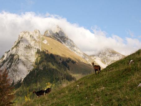 Octobre une belle saison en montagne