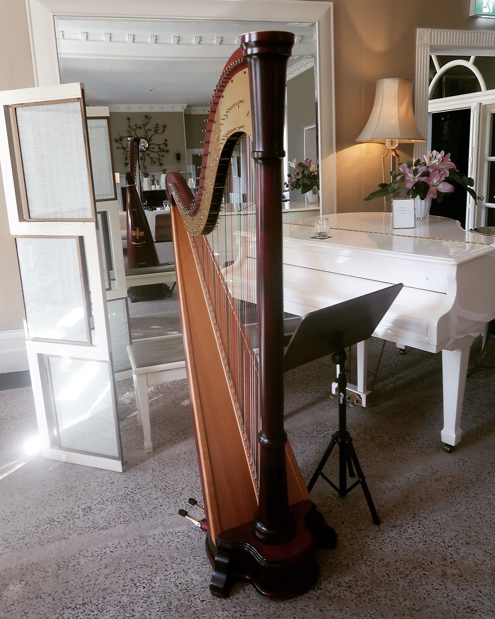 My Harp At The Grove