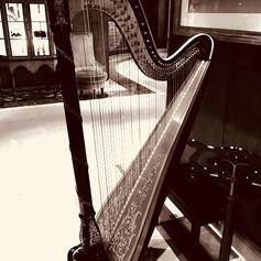 Harp at Hotel