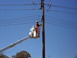 Utilities and Distribution Companies