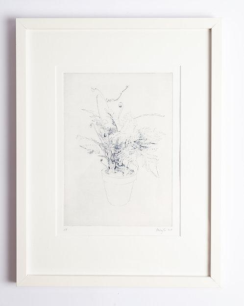 """""""ohne Titel"""" (Farn) von Jasmina Michajlow"""