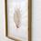 Thumbnail: Seashell 1 (2020) von Pomba