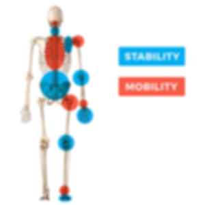 1225a_en_red_stability-mobility.png