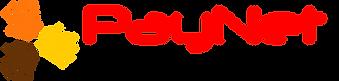 PayNet digital Banking logo.png