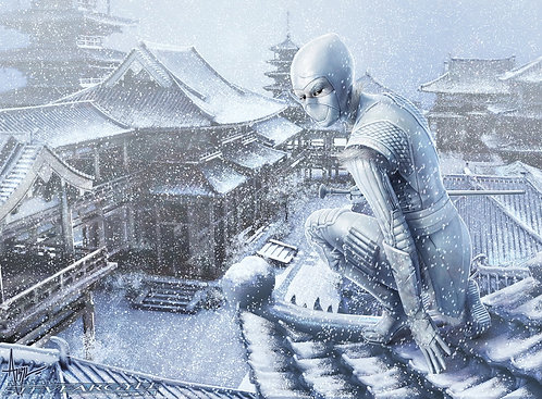 Snow Ninja Playmat