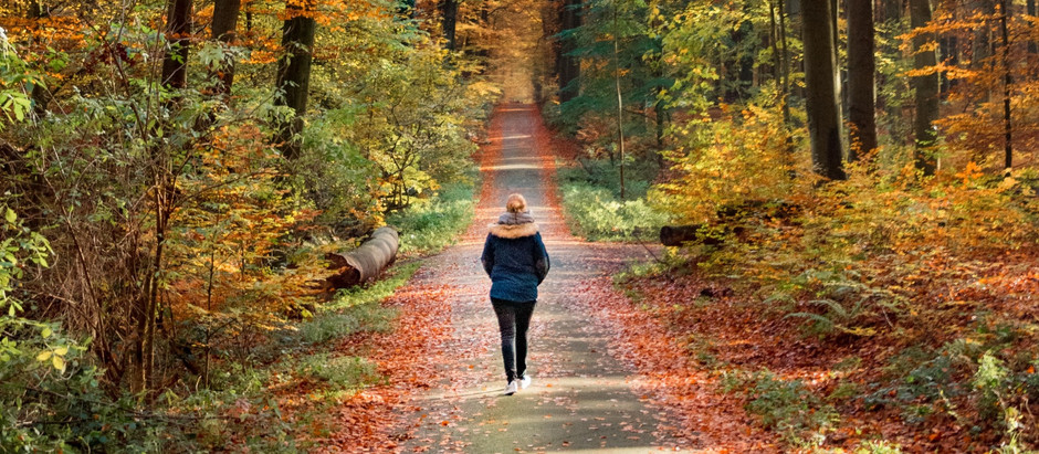 Walking therapy: what is it and how does it work?