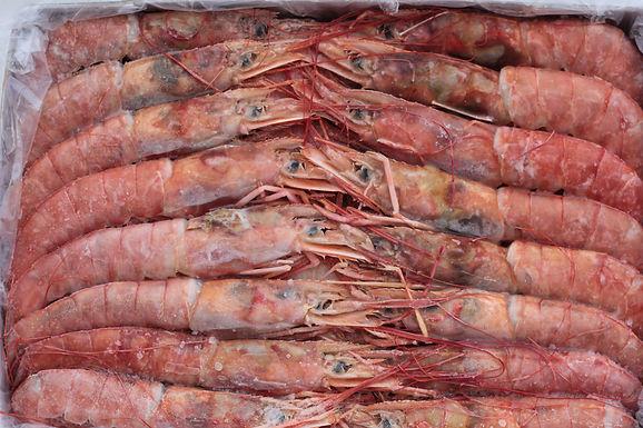 Whole Argentinan Red Shrimp - Frozen