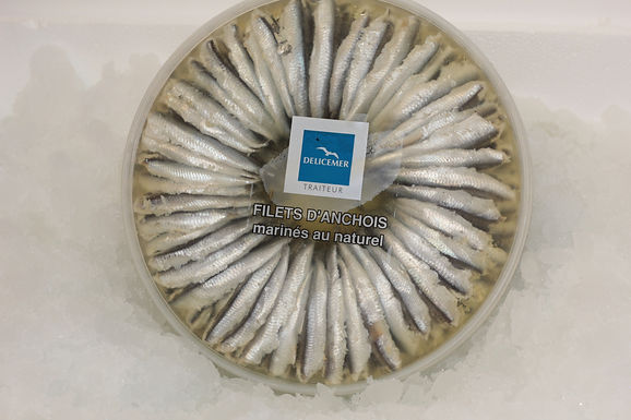 Fresh Anchovy Fillets In Oil