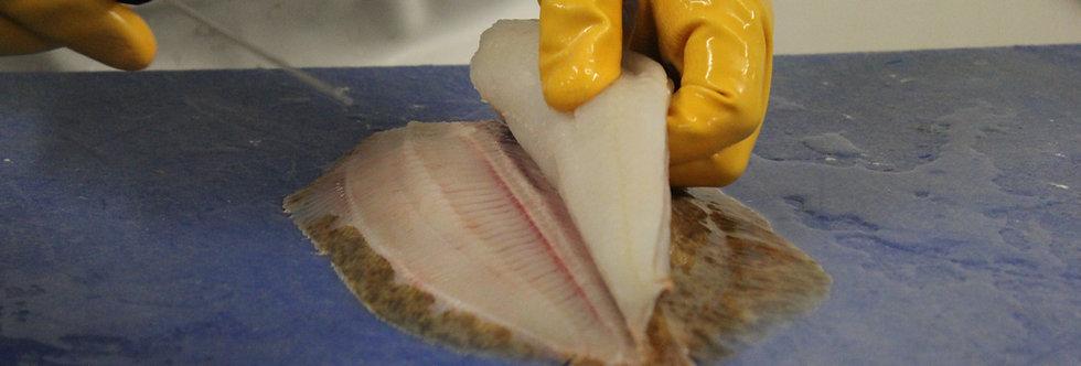 Lemon Sole Fillets (Skin On 20%Glaze) - Frozen