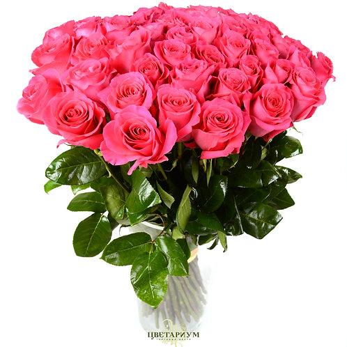 51 роза Pink Floyd