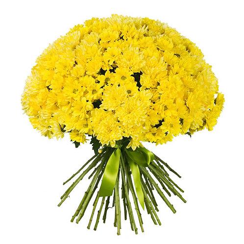 букет из 25 желтых кустовых хризантем
