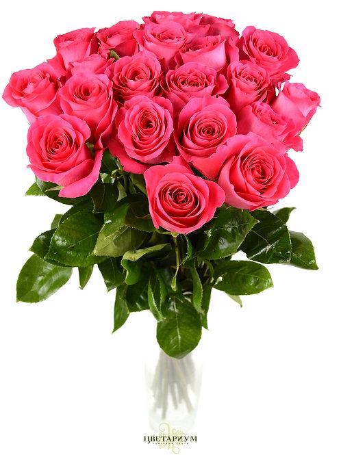 21 роза Pink Floyd