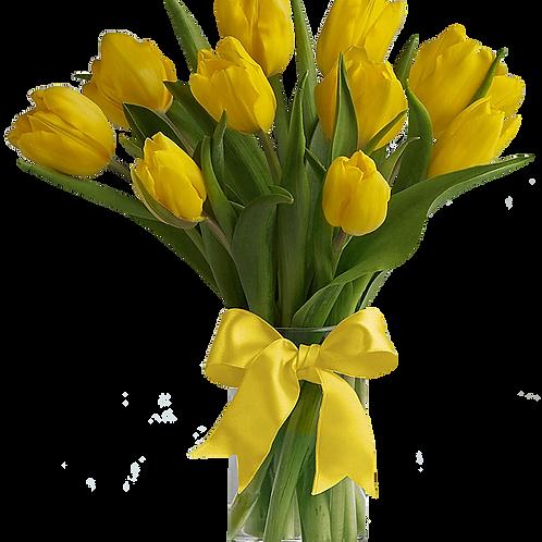13 желтых тюльпанов
