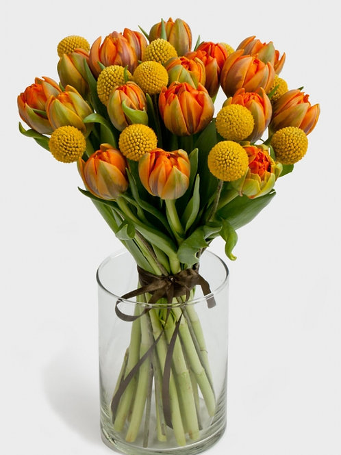 букет 19 тюльпанов 10 краспедий \