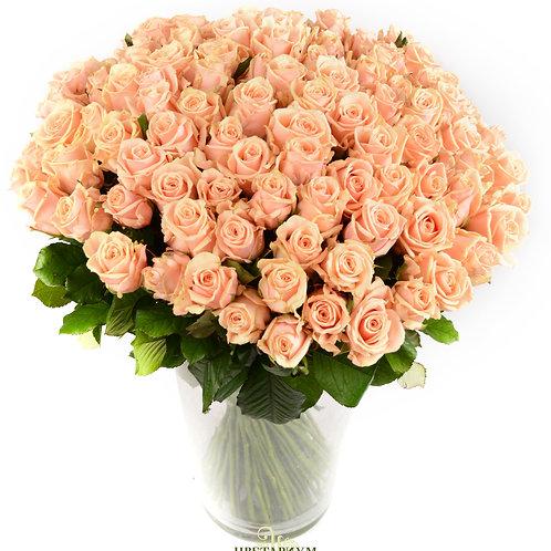 101 роза Talleya