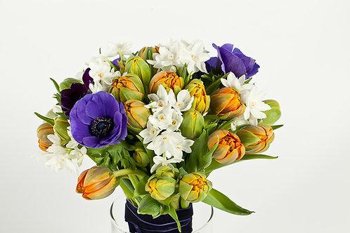 тюльпан 17 нарцисс 7 анемон 5