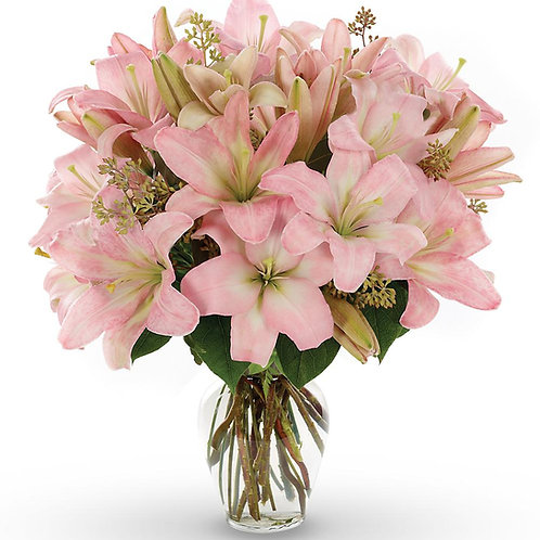 розовая лилия 15 шт скиммия