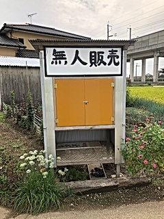 野菜無人販売_04