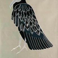 The Black Vulture ( Grey )