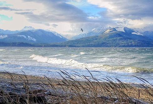 Winter Storm by Lynn Wilson