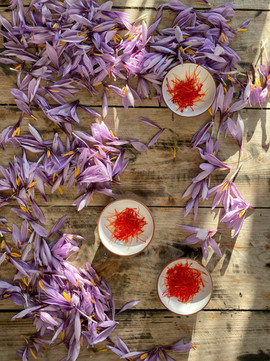 Organic saffron from Bornholm