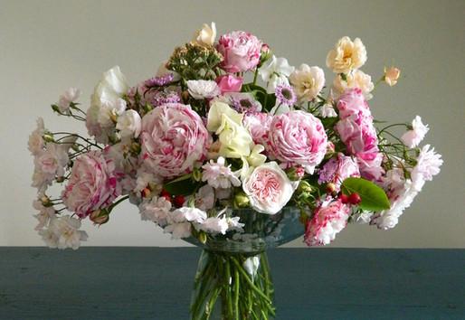 Historical fragrant roses_variegata di b