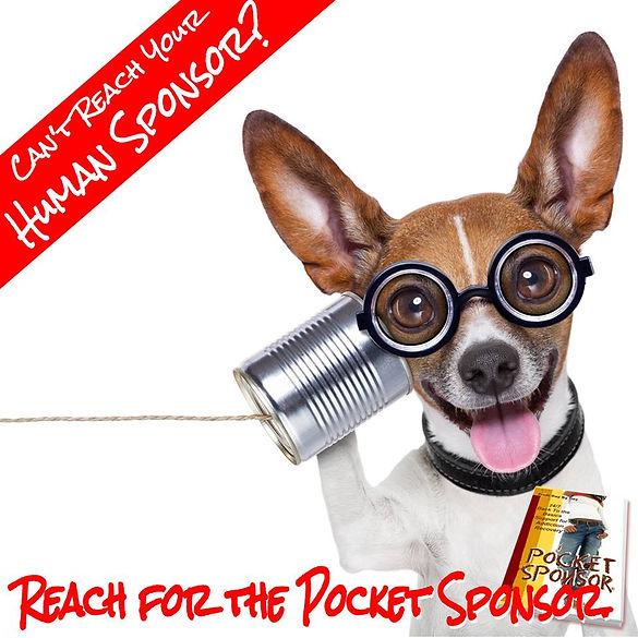 Pocket Sponsor Add.jpg