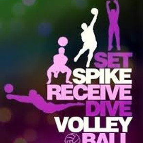 Save the Alano Club Sober Volleyball Tournament