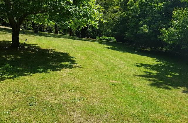 Sweeping Lawns at Mirador