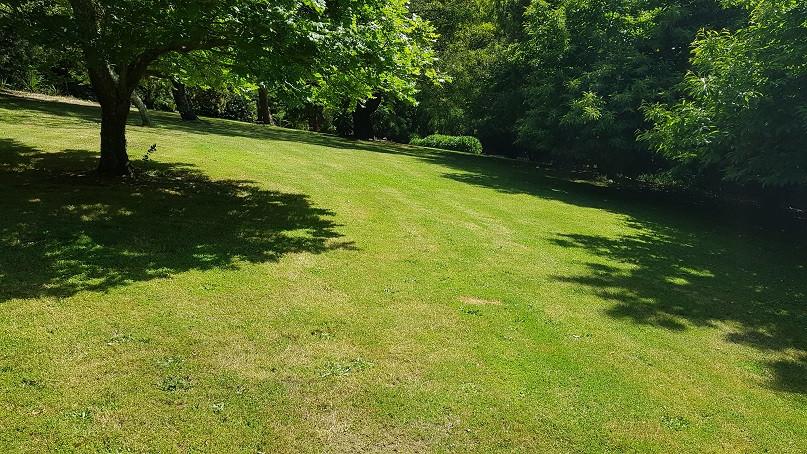 Sweeping Lawns at Mirador.jpg